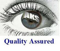 AKS Information Technology Services Pvt Ltd