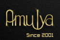 Amulya Infotech India Pvt Ltd