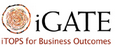 iGATE Computer Systems Ltd