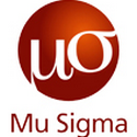 Mu Sigma Business Solutions Pvt Ltd