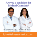 SPINE AND WELLNESS CENTERS OF AMERICA