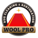 Wool Pro Rug Cleaning provides the high quality rug cleaning New Orleans. They use patented state-of-the-art equipment, non-toxic environmentally safe supplies, which will be safe for people with allergies, children, and pets. Get the highest standard workmanship at lower prices. To know more, visit https://woolpro-rugcleaning.com