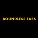 Boundless Labs