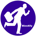 bizoally web services